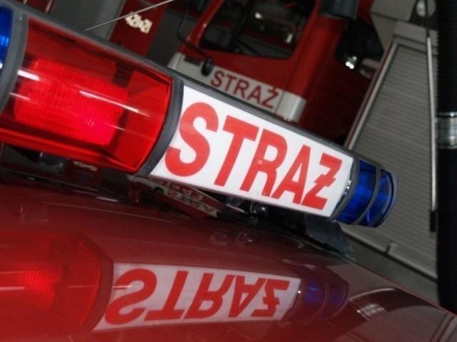 Strażacy usuwali powalone drzewo na ulicy Grodzisko w Wodzisławiu Śl.