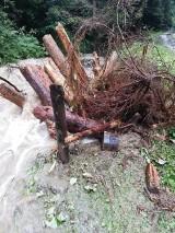 Po gwałtownej ulewie wezbrały górskie wody. Porwały 300 metrów drogi w Kosarzyskach