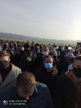 Policja na aukcji koni! Sanepid wstrzymał licytację koni w Wiączyniu Dolnym koło Łodzi! Konie za bezcen na licytacji komorniczej