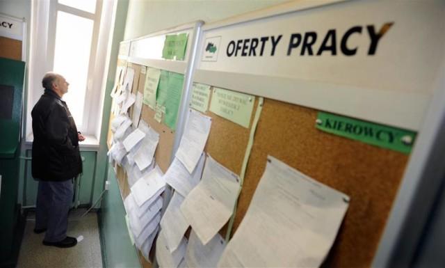 Tylko 296 wolnych miejsc pracy lub aktywizacji zawodowej miał PUP Toruń w październiku