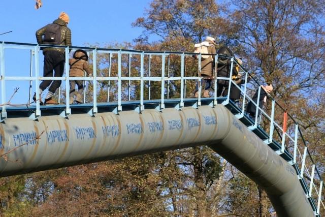 Trwa remont połączony z zamknięciem jednego z najdłuższych we Wrocławiu mostów dla pieszych- kładki Siedleckiej w lesie Rakowieckim