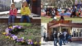 Tarnów. Dziś pierwszy dzień wiosny - szary i smutny. Powspomijamy, jak ją witano rok temu [ZDJĘCIA]