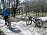 Kocimi zakamarkami, czyli przejażdżka po Lasku Północnym w Słupsku [FELIETON ROWEROWY]