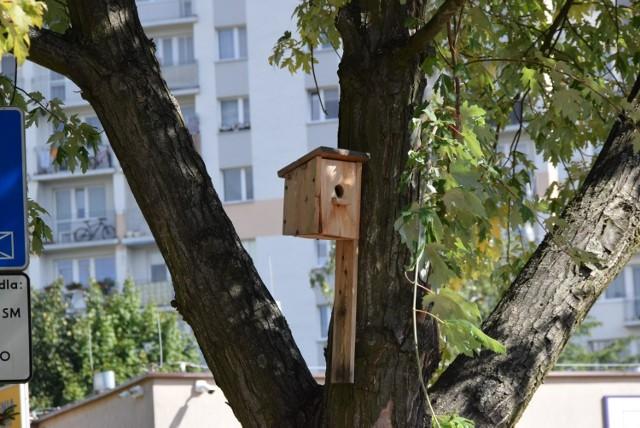 Na osiedlu Uroczysko w Kielcach zamontowano pierwsze budki lęgowe dla ptaków.