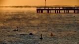 Mgła nad Zatoką Pucką - klimatyczny Puck w promieniach słońca i zmysłowych oparach | ZDJĘCIA