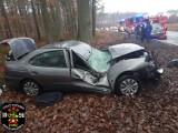 Fatalny wypadek dzień przed wigilią. Auto wpadło na drzewo! [ZDJĘCIA]