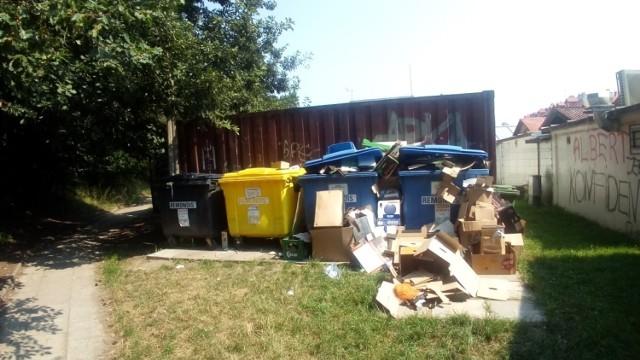 Problem z segregacją śmieci? Gdyńska wyszukiwarka podpowie