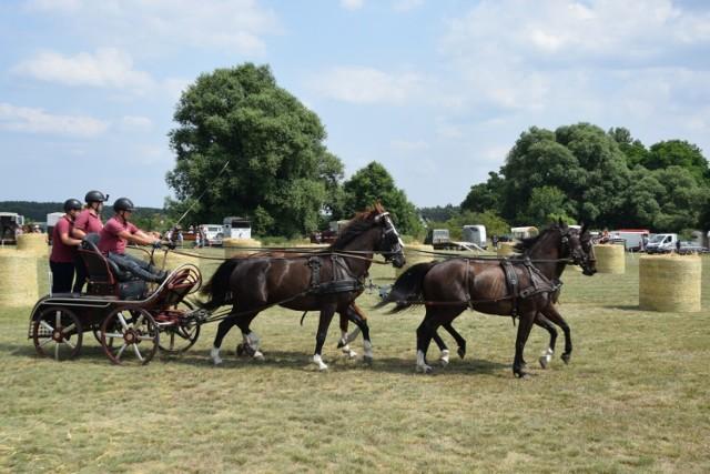 Konkurs w powożeniu w kategorii bryczka parokonna (małe i duże konie), bryczka single (małe i duże konie) oraz konkurs jazdy konnej w siodle.