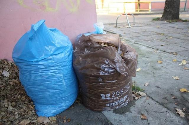 W 2015 ZOM odebrał od sopocian 1 789,46 ton liści, traw oraz gałęzi