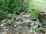 Mysłowice: Strażnicy miejscy mają nową broń  w walce z podrzucającymi śmieci do parków