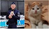 Nietypowa interwencja policji w Białej Podlaskiej. Mundurowi uratowali z opresji… kotka