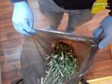 Myszkowscy policjanci przechwycili kilogram marihuany ZDJĘCIA