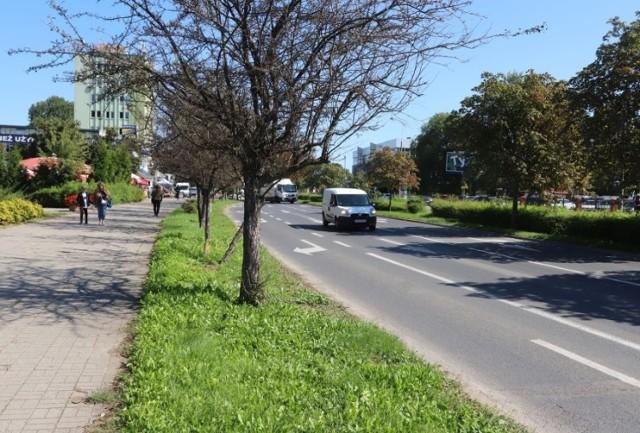W ramach Budżetu Obywatelskiego w Radomiu powstanie ponad 2,5 kilometra nowych dróg rowerowych. Jeden odcinek nowej trasy dla cyklistów powstanie wzdłuż ulicy Beliny-Prażmowskiego.
