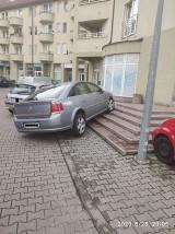 """Oto mistrzowie parkowania z Wrocławia. Zobaczcie """"święte krowy""""! (ZDJĘCIA)"""