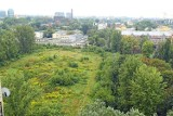 Mieszkańcy Woli apelują o pomoc. Chcą odzyskać zielony teren klubu Sarmata