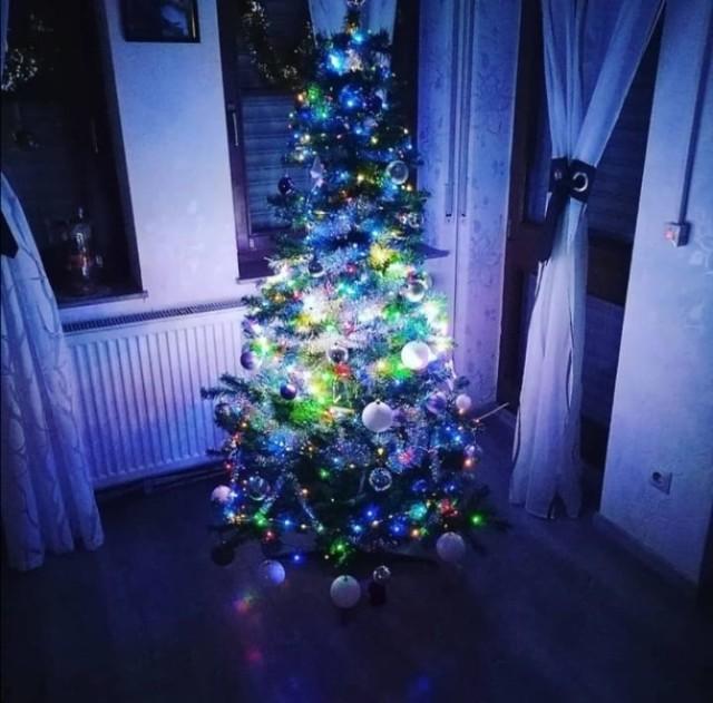 Zobaczcie piękne choinki Opolan na święta Bożego Narodzenia 2020.