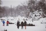 Park Śląski w zimowej odsłonie. Dawno nie było tak biało! Zobaczcie zdjęcia Parku Śląskiego w obiektywie Marzeny Bugały, fotoreporterki DZ