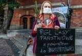 W Gdańsku przeciw wycince w Bieszczadach. Ekolodzy: Chcemy powiedzieć, co się tam dzieje
