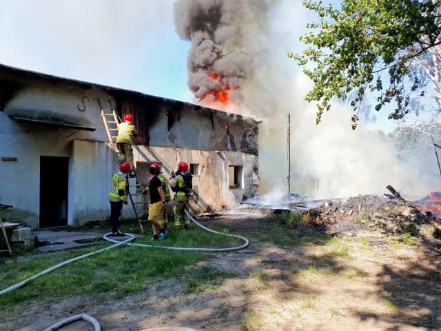 Pożar budynków przy ul. Rydygiera w Grudziądzu. W akcji 13 zastępów straży pożarnej
