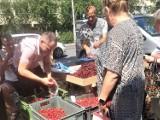 Ceny warzyw i owoców na ryneczkach przy ul. Tatrzańskiej. Gdzie jest drożej? Porównaliśmy ceny