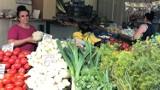 Ceny warzyw i owoców na chełmskim bazarze. Królują ogórki, pomidory i czereśnie. Zobacz zdjęcia