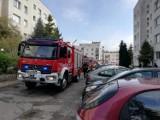 Strażacy walczyli z pożarem na gdyńskim osiedlu Karwiny. Sytuacja jest już na szczęście opanowana