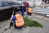 Skazani odpracowali wyroki sprzątając ulice i przystanki. W 2019 roku przepracowali 1300 godzin na rzecz miasta