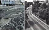 Remont al. Niepodległości w Świdnicy. Droga będzie przebudowana, a okolica zyska zieleń nawiązującą do historii tego miejsca
