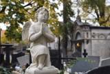 Nekropolie na kaliskiej Rogatce. Cmentarz Miejski w Kaliszu ZDJĘCIA