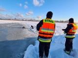 Zwierzęta zimą potrzebują pomocy. Strażacy z OSP i strażnicy gminni idą im z pomocą. Pomagają także gminy  ZDJĘCIA