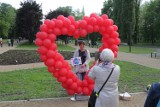 Sosnowiec: Po liftingu Park Fusińskiego jest już otwarty. Mieszkańcy mogą korzystać z uroków najstarszego parku w mieście. Zobacz ZDJĘCIA