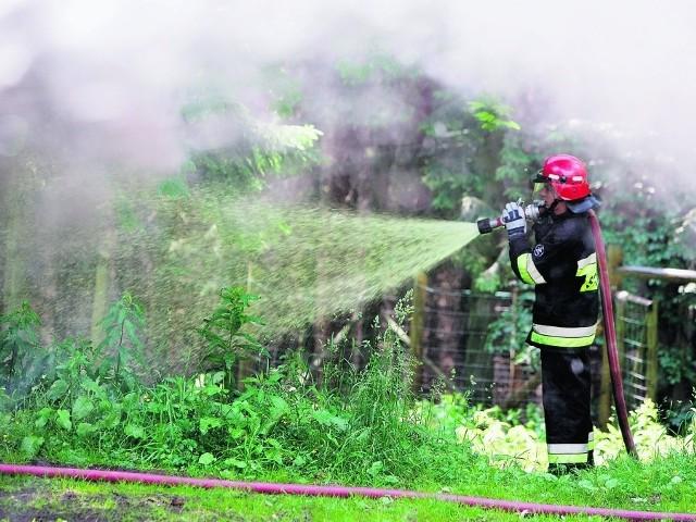 Na Dolnym Śląsku strażacy bardzo często muszą walczyć z ogniem w palących się lasach