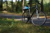 Kalisz w TOP 10. Sprawdź rowerowy ranking polskich miast