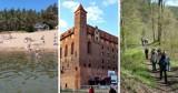 Najciekawsze atrakcje na Kociewiu! Szukasz pomysłu na wycieczkę? Koniecznie sprawdź te miejsca!
