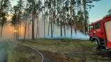 Zagrożenie pożarowe w Puszczy Goleniowskiej i nie tylko