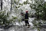 Pamiętacie majowy śnieg w Legnicy? to już dziewięć lat minęło  [ZDJĘCIA]
