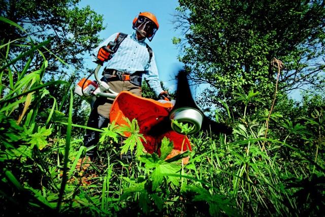 Okazuje się, że jednym z zawodów deficytowych w roku 2021 w powiecie szamotulskim - zgodnie z prognozą - jest ogrodnik