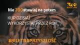 """Wrocławskie zoo sprzedaje """"Bilety na przyszłość"""""""