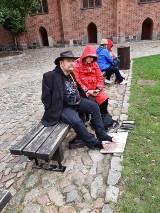 Malbork. Wybrali zamek na plener malarski. Artyści niepełnosprawni przyjechali na ogólnopolskie spotkanie