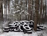 Kto wyrzucił stare opony w lesie? Nadleśnictwo w Oleśnicy szuka sprawców