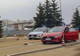 Taka była zdawalność egzaminów na prawo jazdy w Wojewódzkim Ośrodku Ruchu Drogowego w Przemyślu [DANE]