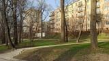 Spacer po Ogrodzie Saskim w Lublinie. Zobacz na zdjęciach, jak przyroda budzi się tu do życia!