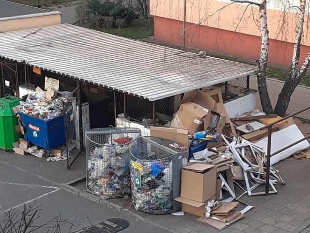 Pergola na ul. Moniuszki we Włocławku. Taki widok można tu często zobaczyć
