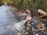 Wichura w powiecie. Strażacy walczą z powalonymi drzewami