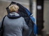 IMGW ostrzega przed bardzo silnym wiatrem w Lubuskiem!   [MAPA POGODOWA]
