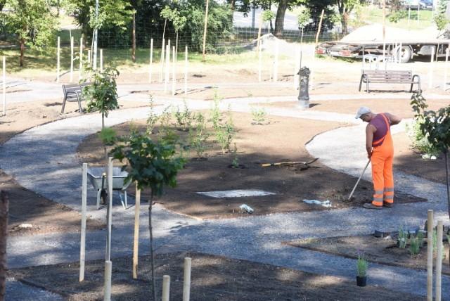 Budowa nowej strefy relaksu przy ul. Rydza-Śmigłego w Zielonej Górze.
