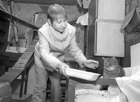 Maria Jakubska z jednym z kocich bywalców piwnicy. Olgierd Górny