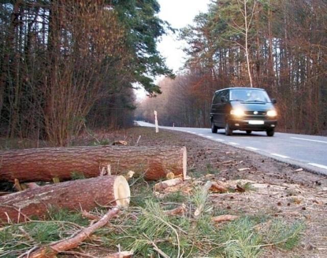 Droga 689 Bielsk Podlaski -Hajnówka. Niewielki odcinek drogi przebiega przez Las Hołodowski. Zostanie przebudowana do końca 2023 roku