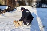 Bytowscy policjanci proszą, żeby zadbać o swoje psy i koty