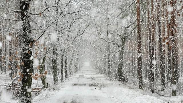 Piękna zima w Nowej Soli i okolicy. Zobaczcie zdjęcia mieszkańców z poranka w środę, 17 marca 2021 roku.
